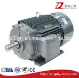 Электрический двигатель низкого напряжения тока серии Сименс Beide