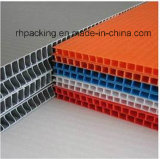 feuille recyclable de polycarbonate de la meilleure feuille offerte par usine pp des prix pp Correx de 4mm 1220*2440mm