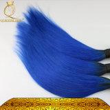 100%の純粋なマレーシアの加工されていないバージンの毛(FDXJ-MB565)