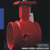 Api 609 Ci/Di/Wcb/Lcb/Ss Groove Butterfly Valve con Manual Operation