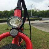 Самый модный тучный Bike Rseb-505 пляжа покрышки 2016