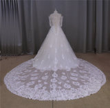 Rückseitiges langes Serien-Hochzeits-Kleid oben sich schnüren