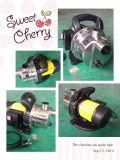 (SDP600-10) 600W Bewässerungssystem-Hochdruckwasser-Pumpe