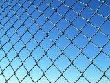 녹색 Chain Link Fence (vinly 또는 입히는 힘)