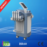 Máquina do salão de beleza da beleza de quatro diodos da tecnologia 528 do comprimento de onda para a lipólise do corpo do laser de Lipo da venda