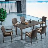 Giardino esterno di vimini di alluminio accatastabile della mobilia che pranza presidenza stabilita con la Tabella da 8-10person Using (YTA362-1&YTD020-4)