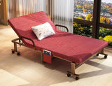 Single d'profilatura Bed/Metal Folding Bed con Mattress