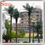 Школа Landscaping вечнозеленая искусственная пальма кокоса