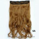 Non-Seguire la femmina cinque della parrucca fermano una clip con una graffetta di capelli ricci del chip nelle estensioni dei capelli