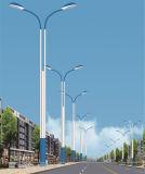 Luz de calle del LED con la talla doble de los brazos de Leddld-001