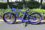 EN15194 vélo électrique 500W Fat Tire Li-ion