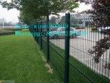 Fornecedor de China da cerca soldada PVC do engranzamento de fio
