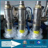 48V Gleichstrom Solar Powered Small Submersible Sump Pump Manufacturer