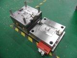 Molde do competidor em moldes da qualidade superior do fabricante de China