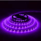 セリウムおよびRhos 30SMD5050紫色LEDのストリップ