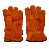 Kuh-aufgeteiltes Leder-Winter-Fahrer, die Handschuhe mit Thinsulate vollem Futter Arbeits sind