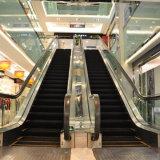 De openbare WoonRoltrap van de Stap van de Passagier van de Plaats Commerciële Automatische