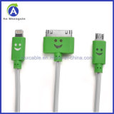 Câble usb chaud de Pin de Sell Factory Wholesale Smile Face 8 pour iPhone/Micro