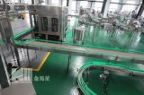 Machine de remplissage complète de l'eau de fournisseur professionnel