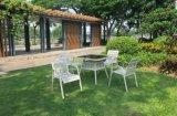 Presidenza di giardino European-Style esterna del rattan (DC-06323)