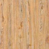 床及び壁600*600のための旧式なPolishdeによって艶をかけられるセラミックタイル