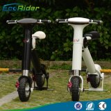 Nuova bici elettrica pieghevole di pollice 48V 500W di modo 10 della Cina