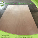 Qimeng Brand를 가진 생성과 Export 12mm Okoume Plywood