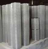 Rete fissa saldata della rete metallica nella costruzione