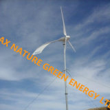 Sustanable Energy 2kw 48V Home e Commerce Use Wind Generator