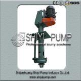 Pompa di pozzetto verticale centrifuga resistente all'uso resistente di trattamento delle acque per elaborare minerale