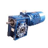 Caixa de engrenagens do sem-fim Nmrv063 com o motor elétrico de eixo de extensão e de sistema de freio