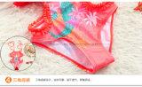 Fabrik-heißer verkaufender süsser Mädchen-Bikini