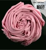 Preiswerter Winter-warmer langer Schale Pashmina 100% Acryl-Schal