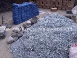 De Spijkers van het Dakwerk van het zink en Gemeenschappelijke Spijkers voor Bouw (80mm)