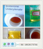 Muestra libre sin procesar esteroide de la pureza del 99% de Boldenone Undecylenate (EQ) para la prueba de la pureza