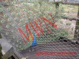 飼鳥園ロープの網