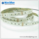 DC24V 96LEDs/M 5050 RGB LED Strip Light