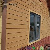 WPC Wand-Fassade-Tafel (TF-04D)