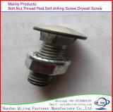Boulon de transport DIN933/934 avec des noix