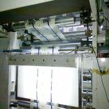 기업 Hs 853 Multi-Union 조정 스트로보스코프 인쇄