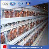 Gaiolas galvanizadas automáticas da galinha da camada da alta qualidade