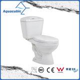 Siphonic de duas partes Dual o toalete branco nivelado (ACT8221)