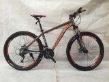 Bicicleta de montanha MTB-005