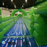 Glissière d'eau gonflable de modèle de l'eau de cocos pour le stationnement LG8093 de l'eau