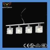 Neues modernes Ausgangsdekorative moderne Lampe der Lampen-2014 (J-MD121963)