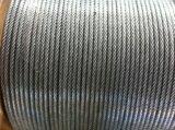 농장을%s 새로운 백색 PVC에 의하여 입히는 직류 전기를 통한 6X19 3.18mm 철강선 밧줄