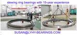 rodamiento del anillo de la matanza del diámetro de los 5.3m usado para el molino de acero Euipment