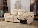 يعيش غرفة ثبت أريكة مع حديثة [جنوين لثر] أريكة (749)