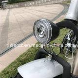 Foldable Fat Tire Electric Bike (RSEB-507)