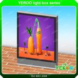 Caixa leve - indicador da caixa leve - caixa leve do diodo emissor de luz - anunciando